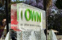 Ice-Sculpture-at-Discovery-Networks-'TLC-presents-OWN'-launch-(2)