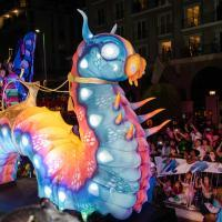 Sea Creature At The Cape Town Carnival 2018